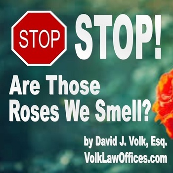 Stop! Are Those Roses We Smell?