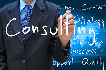 Business Consulting Professional