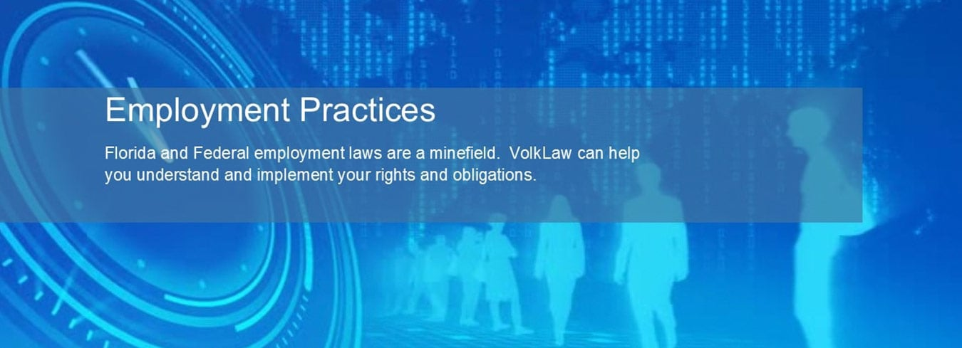 Florida and Federal employment laws are a minefield. Volk Law can help you understand and implement your rights and obligations.
